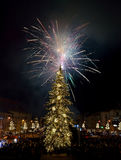 Het vuurwerk van de nieuwjaar` s Vooravond Stock Afbeelding