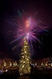 Het vuurwerk van de nieuwjaar` s Vooravond Stock Foto's