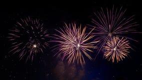 Het vuurwerk van de nieuwjaarviering Stock Afbeelding