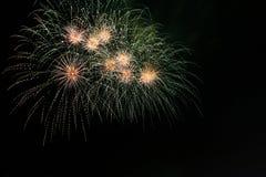 Het vuurwerk van de zeeëgel stock afbeeldingen
