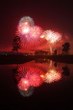Het vuurwerk van het nieuwe jaar Stock Foto
