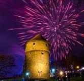 Het vuurwerk van het nieuwjaar Stock Foto's