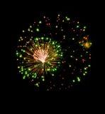 Het vuurwerkexplosie van de kleur in zwarte hemel Stock Afbeelding