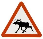Het Waarschuwingssein van de Streek van elanden Royalty-vrije Stock Fotografie
