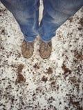 het wachten in de sneeuw Stock Fotografie