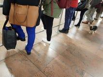 Het wachten voeten en poten Stock Foto