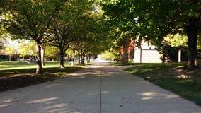 Het wandelen in een universiteit Stock Fotografie