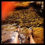 In het water Royalty-vrije Stock Afbeeldingen