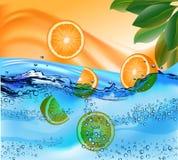 Het water bespat oranje bladeren Stock Afbeeldingen