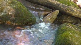 Het water in de mooie bergrivier stroomt om een grote steen in slowmotion Kleine Waterval in Rivier stock videobeelden