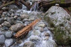 Het water die over rotsen meeslepen en opent een bergstroom het programma stock afbeeldingen