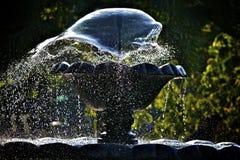 Het Water Freez van de fontein Stock Fotografie