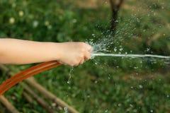 Het water geven Royalty-vrije Stock Foto's