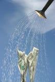 Het water geven de nieuwe groei Stock Afbeeldingen