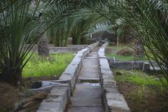 Het water geven systeem in de al Ain oase stock foto's