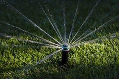 Het water geven van de sproeier gras Royalty-vrije Stock Fotografie