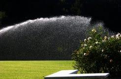 Het water geven van de tuin royalty-vrije stock afbeeldingen