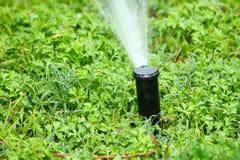 Het water geven van gras in de lente royalty-vrije stock foto