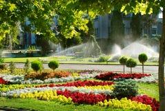 Het water geven van het gazon sproeier Royalty-vrije Stock Foto