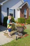 Het water geven van het kind installaties stock fotografie