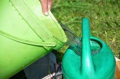 Het water geven van installaties met waterpot Stock Afbeelding