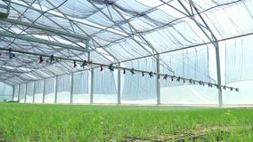 Het water geven van machine het irrigeren installaties in serre Landbouw apparatuur stock footage