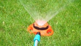 Het water geven van spuitbus op een gras stock videobeelden