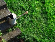 Het water kan op groen weide met gras bedekken Stock Foto