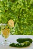 Het water van de citroenkomkommer in het glas op de vage aardachtergrond met exemplaarruimte De zomer koude cocktails met ijs en  Stock Afbeelding