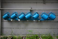 Het water van de gietlepel de installaties. Royalty-vrije Stock Foto's