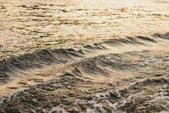 Het water van de vijver bij zonsondergang op het gehele kader royalty-vrije stock foto's
