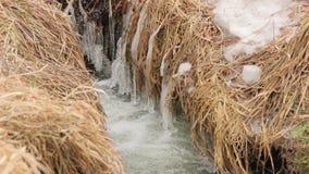Het water van de de winterkreek stock footage