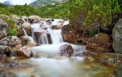 Het water van een bergrivier met rotsen en dwerg-pijnboom dichtbij de waterval Skok in Hoge Tatras Mooi Slowakije Stock Afbeeldingen