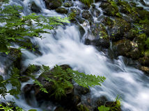 Het water van Runing Royalty-vrije Stock Fotografie