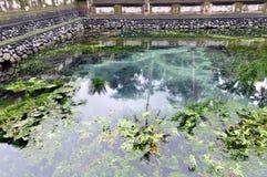 Het water van Scacred bij het tampaksiring van tempel stock foto's