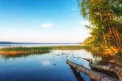 Het water van het spiegelmeer met bezinning van zuivere hemel stock afbeeldingen