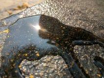 Het water ving de zon stock fotografie