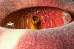Het waterdaling van de close-up op een perzik Royalty-vrije Stock Afbeeldingen