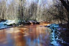 Het waterlandschap van de de lentekreek Stock Foto
