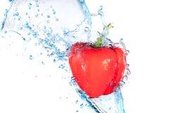 Het waterplons van de peper Royalty-vrije Stock Afbeeldingen