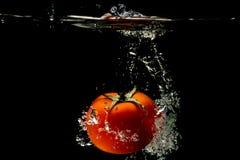 Het waterplons van de tomaat Royalty-vrije Stock Foto