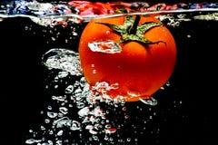 Het waterplons van de tomaat Royalty-vrije Stock Afbeelding