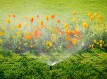 Het watersproeier die van het irrigatiesysteem in tuin werken Royalty-vrije Stock Afbeelding