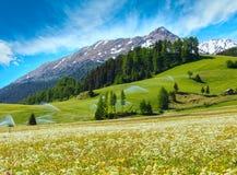 Het waterspuiten van de irrigatie in de berg van de Alpen van de Zomer Royalty-vrije Stock Afbeelding