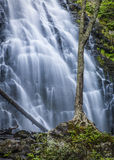 Het watervallandschap Crabtree valt Blauw Ridge Parkway NC Stock Foto's