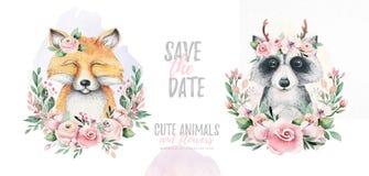 Het waterverfbeeldverhaal isoleerde leuk van de babyvos en wasbeer dier met bloemen Boskinderdagverblijf bosillustratie royalty-vrije illustratie