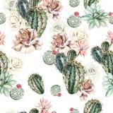 Het waterverfpatroon met cactus en nam toe royalty-vrije illustratie