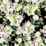 Het waterverfpatroon met de banny, groene bladeren van Fanny, lavendel en tulp bloeit royalty-vrije illustratie