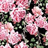 Het waterverfpatroon met roos en pioenbloem, besbessen en eucalyptus gaat weg royalty-vrije illustratie