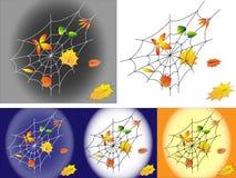 Het Web van de herfst Stock Afbeelding